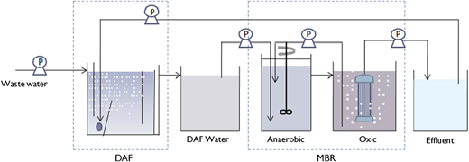 Schematic diagram of the wastewater treatment system used in the study.