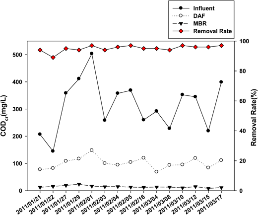 CODcr concentrations in raw water, and DAF and MBR effluents with overall removal rate.