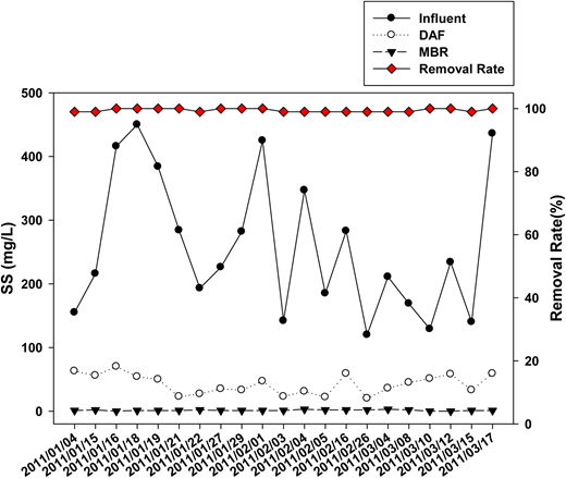 SS concentrations in raw water, and DAF and MBR effluents with overall removal rate.