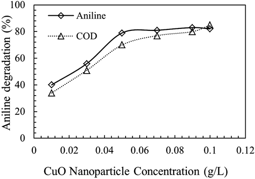 Effect of CuO nanoparticle concentration on aniline degradation (pH = 7, aniline concentration = 100 mg/L, time = 60 min).