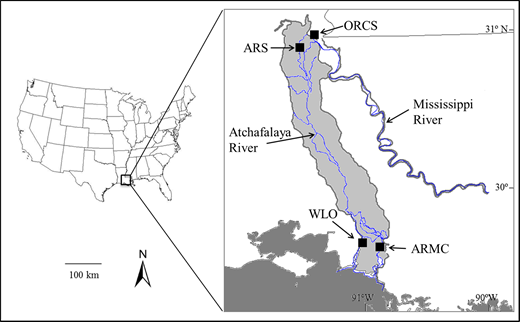 Atchafalaya River Basin (gray area) with the locations of ORCS, ARS, ARMC, and WLO.