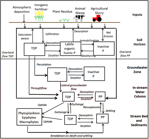 The INCA-P model nutrient flows and process controls.