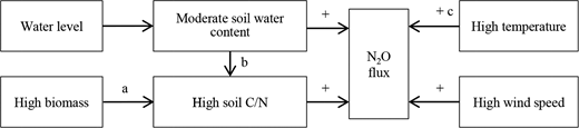 Conceptual model of drivers of N2O emission. Symbols (+) represent positive effects. (a) Plants have both positive and negative effect on soil nutrients through consumption of nutrients for growth and addition of nutrients resulting from decomposition of tissues. (b) High SWC is conducive to the accumulation of SOM. (c) In this work, we see a negative correlation between temperature and flux; we propose this uncommon correlation occurs because the positive effect of temperature on decomposition is masked by even stronger effects from SWC and nutrients.