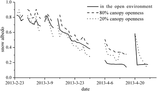 The daily average of snow albedo in the open environment and beneath forest canopy.