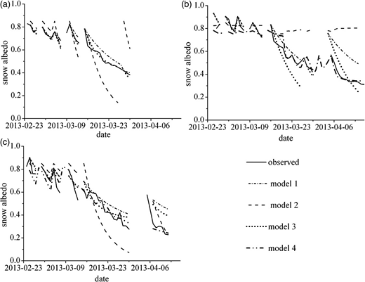 The simulated value and measurement value of snow albedo using different models: (a) in open environment, (b) beneath 80% forest canopy openness, (c) beneath 20% forest canopy openness.