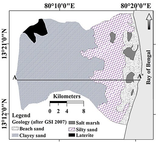 Geological map of the study area.