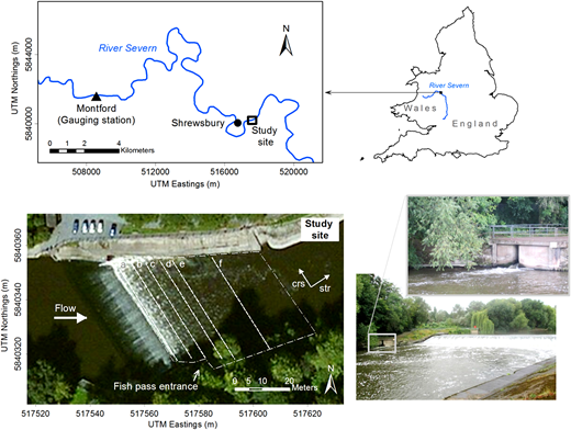 Study location; the white dash-point line depicts the extent of the study area and the white dashed lines show cross sections referred to throughout the main text; the arrow pointing to the location of the fish pass entrance is orientated perpendicular to the front wall of the fish pass;  and  stand for the streamwise and cross-stream directions; the images on the bottom right show the study site on the day of the data collection looking in the upstream direction (20 August 2014).