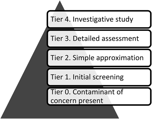 The tiered approach scheme (prepared according to Technical Guidelines (2010) for the identification of mixing zones).