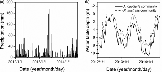 Daily variations of precipitation (a) and WTD (b) measured from January 2012 to July 2014.
