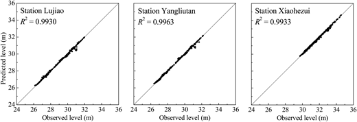 Scatter plots of observed and predicted lake levels at 3 representative stations: Lujiao (the eastern), Yangliutan (the southern) and Xiaohezui (the western).