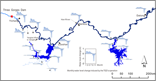 Spatial distribution of monthly water level change induced by the TGD during the years 2006–2011.