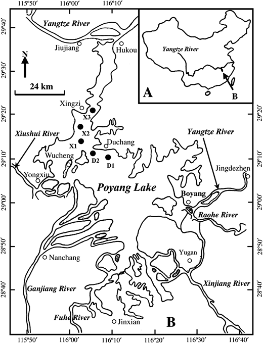 Location of Poyang Lake, China, and the sampling sites (black dots), revised from Wang et al. (2007).