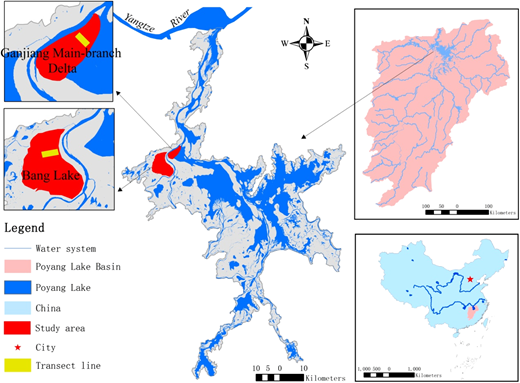Locations of the two studied typical wetlands in Poyang Lake.