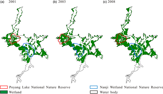 Simulated lake wetlands' distribution corresponding to the lowest water levels measured at Duchang station: (a) for 2001 at 10.15 m water level; (b) for 2003 at 8.72 m water level; (c) for 2008 at 7.99 m water level. The filled area represents wetland regions (refers to the area under a periodic inundation) and the white area water surface. Note: the wetland regions here may contain some villages and farmlands.