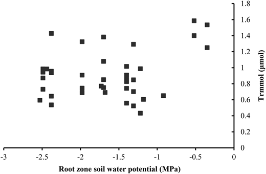 The relationship between the shaded leaf transpiration rates and root zone water potential.