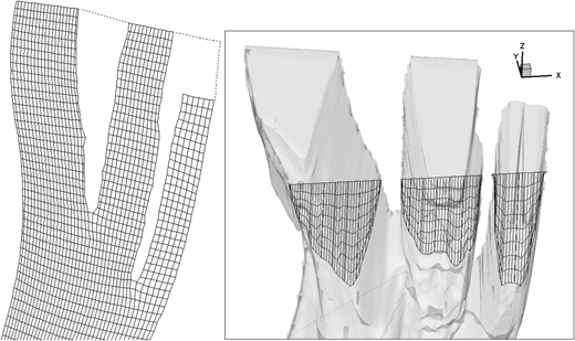 Downstream part of the coarse grid seen in plan view (left). Vertical slice through the grid (right).