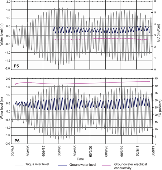 Diagram of groundwater level and EC variations in Wells 5 and 6, and of the tide in the Tagus River depending on the time. Please refer to the online version of this paper to see this figure in colour: http://dx.doi.org/10.2166/nh.2016.203.