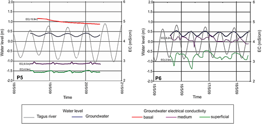 Diagram of groundwater level and EC variations at different depths in Wells 5 and 6, and of the tide in the Tagus River depending on the time. Please refer to the online version of this paper to see this figure in colour: http://dx.doi.org/10.2166/nh.2016.203.
