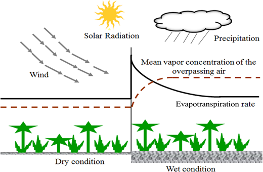 The effect of adverted air passing from dry condition over a wet condition in the coastal plain landscape.