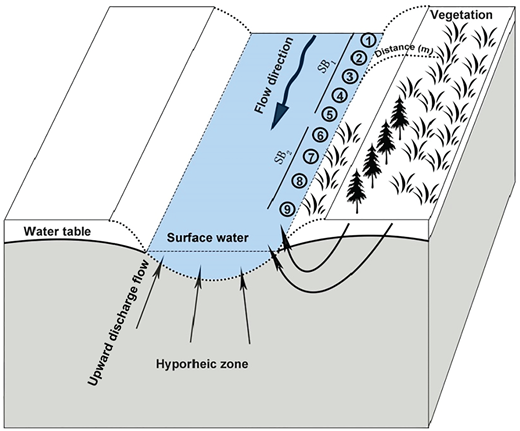 Schematic map showing test points, riparian vegetation, hyporheic water exchange pattern, and distances from bank/water interface to riparian vegetation for the test period of July 2015.