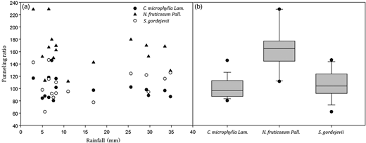 The relationship between individual rainfall and SF funneling ratio for C. microphylla, H. fruticosum and S. gordejevii. Box plots portray comparisons among C. microphylla, H. fruticosum and S. gordejevii for stem funneling ratio data at the median and 25th and 75th percentile. Whiskers show the 5th and 95th percentile.