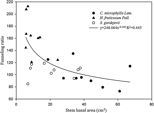 The relationship between stem basal area and average SF funneling ratio for C. microphylla, H. fruticosum and S. gordejevii using total rainfall, SF volume and stem basal area measurements over the study period.