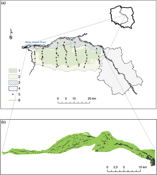 Location of the study area. (a) 1, Kampinos National Park; 2, protective zone of the Kampinos National Park; 3, Vistula River floodplain terrace; 4, city of Warsaw; 5, piezometers of the KNP groundwater monitoring system; 6, lines of the monitoring system and line of schematic cross-section (Figure 2). (b) Residential and service buildings within the Vistula River floodplain terrace.