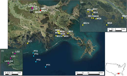 Site map where river water sites are designated MR, ocean sites are designated PT, groundwater sites are designated LG, and estuary sites are designated MG and LC. Inserts show more detailed distribution of (a) Barataria estuary sites and (b) groundwater sites. Bottom right shows location of study site with respect to USA in the box.