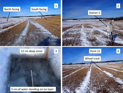 Photos 1, 2 and 4 taken at different measurement points on 3 April 2013. Photo 3 shows water standing on an ice layer on top of the soil during snow sampling on 30 January 2013.