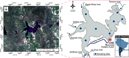 Study area and position of sampling sites.