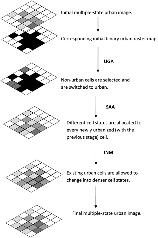 The framework of cell state transformation and allocation that drives multiple-state urban growth.