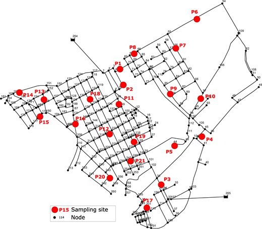 Plane-view of sub-network and sampling sites (grey/red circles). The full color version of this figure is available online at http://www.iwaponline.com/jh/toc.htm.