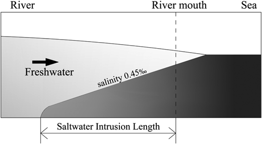 Schematic diagram of saltwater intrusion length in the estuary.