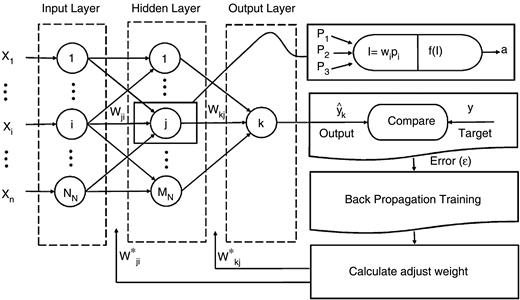 A three layered feed-forward neural network with BP training algorithm (Nourani et al. 2009).