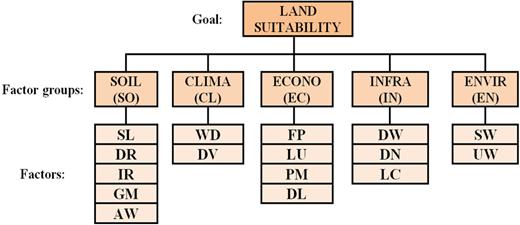 Decision problem hierarchy.