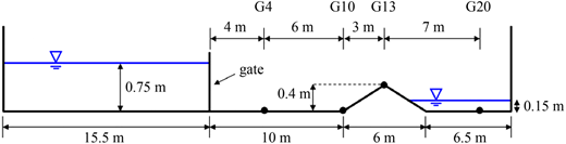 Straight channel with a triangular bump in the bed. Side elevation showing gauge positions indicated with a suffix number after G which means distance from the gate, i.e., G4 indicates that it is 4 m away from the gate (Morris 2000).