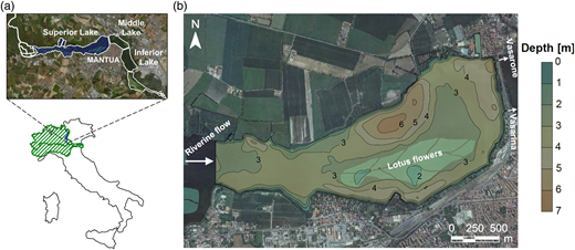 (a) Location of the Superior Lake of Mantua in the Po River basin and in the Mantua Lakes system; (b) bathymetry of the modelled area of the lake (adapted from Pinardi et al. (2015); ortophotos courtesy of the Lombardy Region).