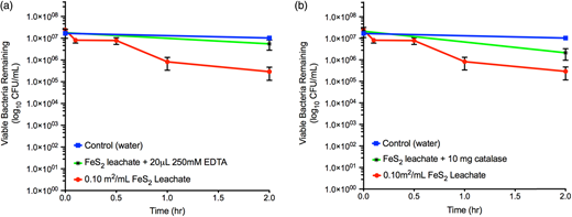 Comparison of E. coli MG1655 survival in pyrite leachate with added EDTA versus added catalase. (a) Bacterial survival in 24-hour pyrite leachate with added EDTA. (b) Bacterial survival in 24-hour pyrite leachate with added catalase. EDTA more effectively prevents bacterial cell death, confirming Fe(aq) as a driver of pyrite's bactericidal properties. Plots display mean CFU (N = 3, SEM) of viable bacteria at each time point.