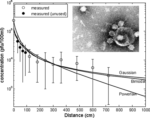 Removal of the bacteriophage 241 during infiltration through six columns connected in series over 39 days at 1 m/d PWV. The circles, open, and filled are the averages of 32 observations, with the standard deviations depicted as bars. The continuous lines correspond to the simulated values obtained with the models mentioned below. Only the open circles were used for the calibration of the model in order to obtain a conservative simulation. Inset: electron micrograph of the bacteriophage 241. Lower right corner: seven viral particles attached to a larger debris particle; upper left corner: single virion.
