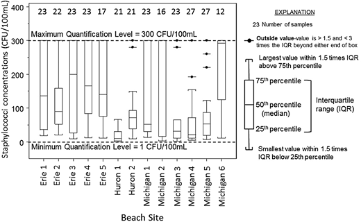 Box plot of staphylococci concentrations determined at each study beach throughout the sampling season. Samples greater than 300 CFU/100 mL are shown as 300 CFU/mL.