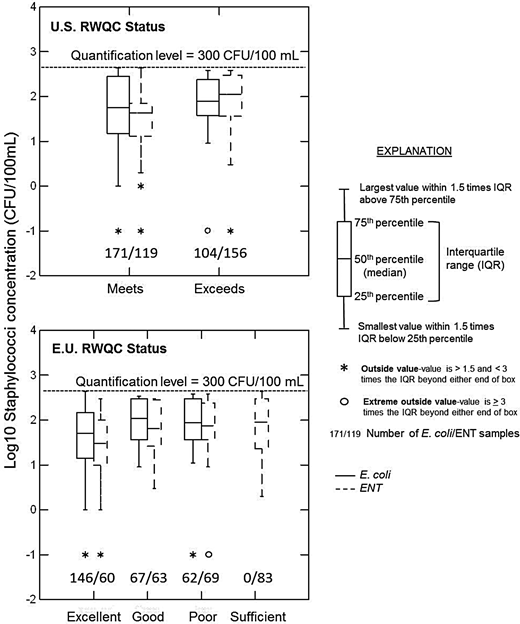 Box plot of staphylococci concentrations at beaches grouped with respect to US and EU recreational water-quality criteria (RWQC) status based on E. coli or enterococci (ENT) concentrations.