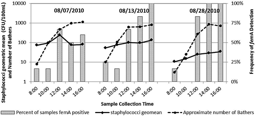Staphylococci concentrations (geomean of six locations), number of bathers, and percentage of samples that contained the femA gene during a single beach study that included the collection of samples every 2 h from 8:00 a.m. to 4:00 p.m. on 7, 13, and 20 August 2010.