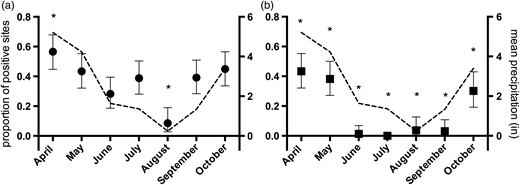 Proportion of sites (±95 exact binomial confidence interval) positive for (a) the human marker and (b) the ruminant marker by month. * indicates significant difference from overall proportion of positive site (G-test, goodness-of-fit, p < 0.05). Dashed line on each graph is the mean monthly precipitation (inches) recorded for the Puget Sound Lowlands for 2011 (NOAA National Climactic Data Center Time Series).