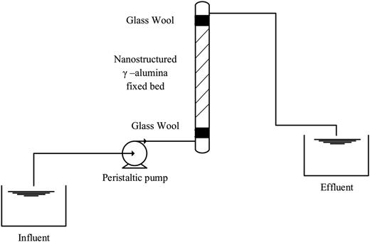 Schematic diagram of the experimental column.