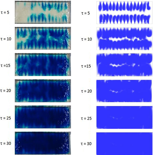 Physical modelling (left image) and CFD images (right image) from small-scale dye distribution experiments at a range of non-dimensional time (τ) values.
