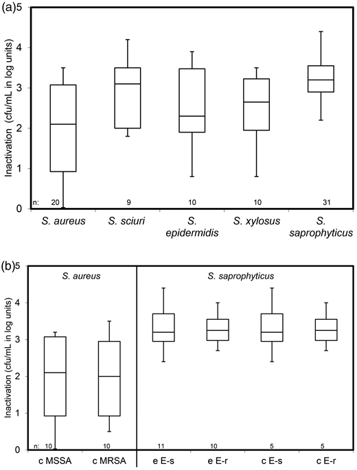Inactivation of 80 Staphylococcus isolates from environmental and clinical sources belonging to (a) five different species and (b) 20 S. aureus and 31 S. saprophyticus isolates by 4 mg/L ozone. The S. aureus strains were split in MSSA and MRSA, the S. saprophyticus strains in erythromycin sensitive (E-s) and erythromycin resistant (E-r). Number of tested isolates, n; isolates from the environmental samples, e; clinical strains. (c) All S. sciuri, S. epidermidis and S. xylosus strains were susceptible against the tested antibiotics.