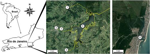 Geographical location of the São João river basin in the northern state of Rio de Janeiro: (1) São João river, (2) Capivari river, (3) Capivari railway, (4) Bacaxá river, (5) Juturnaíba dam, (6) São João river mouth.