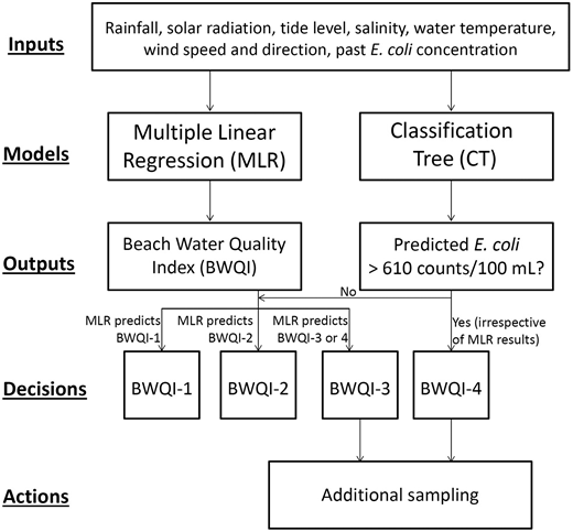 Flow diagram of the proposed operation rules for beach management using a combined MLR and CT modelling approach.