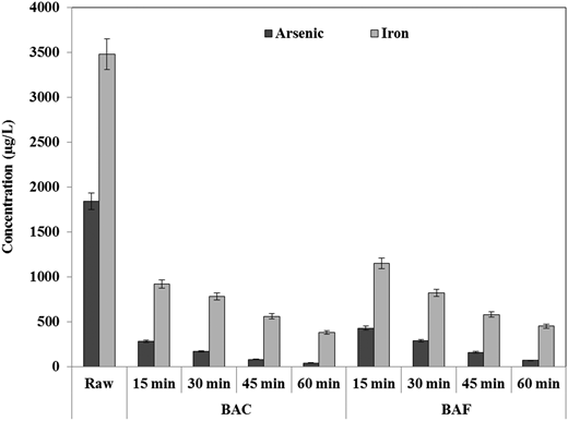 Effect of biological processes on arsenic and iron removal (at an initial DOC concentration of 5.24 mg/L, pH 6.96).