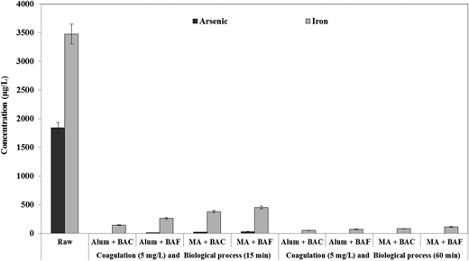 Effect of the combination of coagulation and biological process on arsenic and iron removal (at an initial DOC concentration of 5.24 mg/L, a pH 6.96, a coagulant dosage of 5 mg/L and different contact times for BAC/BAF such as 15 min and 60 min).
